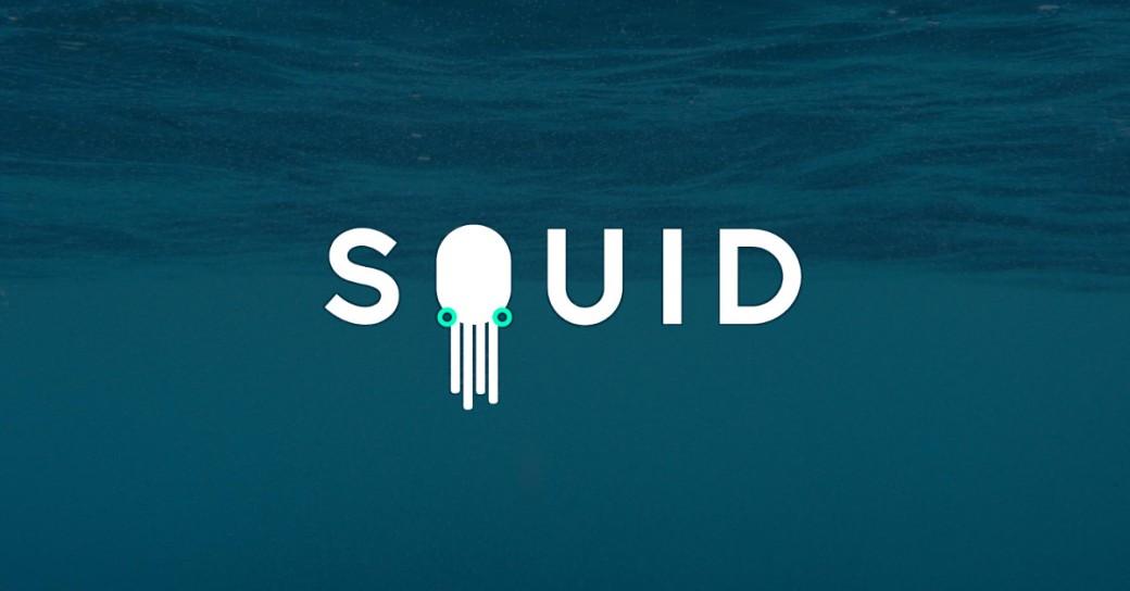 squid-graphic